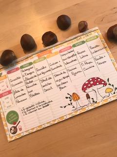 Je vous présente les menus de la semaine du 02/11/2020 au 08/11/2020.
